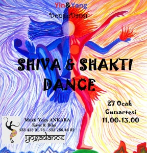 shiva-and-samba-on-indo-brazil-cosmic-dance-seshadri-sreenivasan